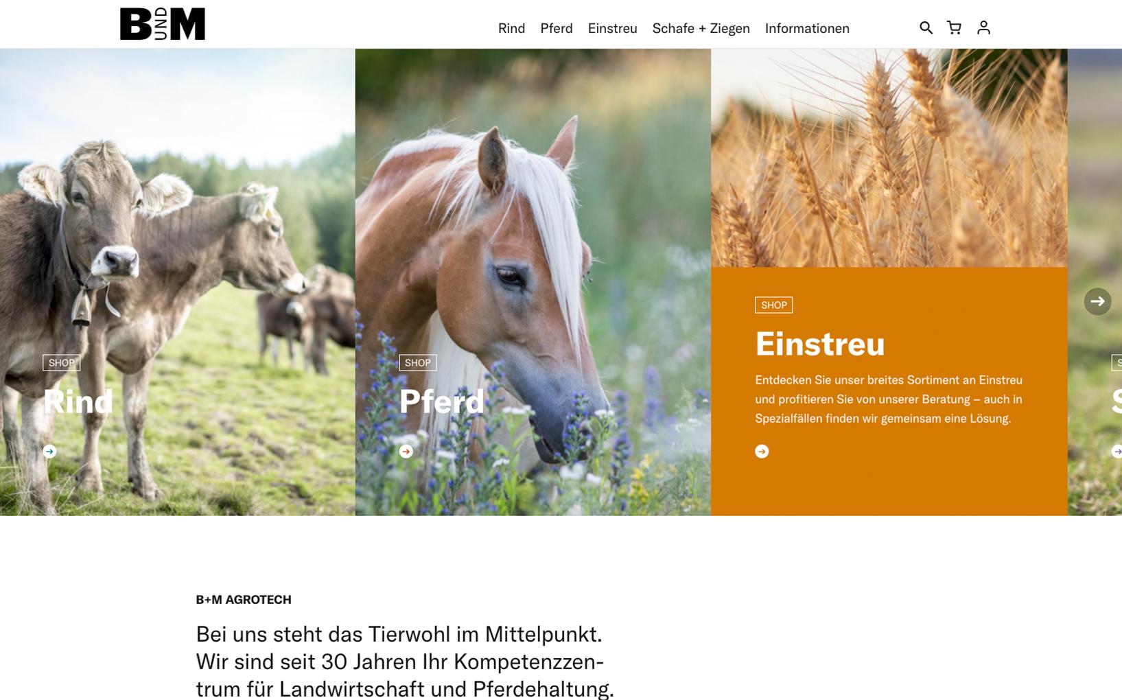 B+M Haus- und Agrotech AG